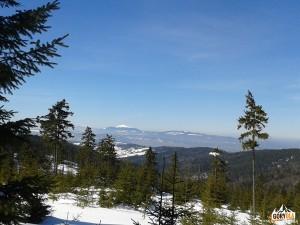 Babia Góra i Polica widziane z drogi na Turbacz (nad Rozdzielem)
