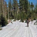 Trasa narciarstwa biegowego zObidowej naTurbacz