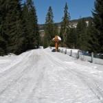 Początek narciarskiej trasy biegowej z Obidowej na Turbacz
