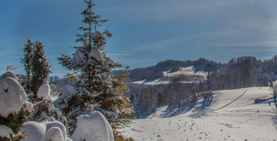 Zimą pod Wysoką