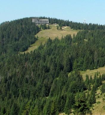 Turbacz 1310 m