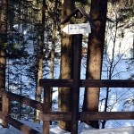 Mokry Stawek przy niebieskim szlaku niedaleko Przełęczy Krowiarki