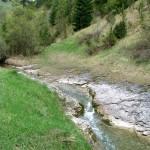 """Koryto potoku w Rezerwacie """"Biała Woda"""""""