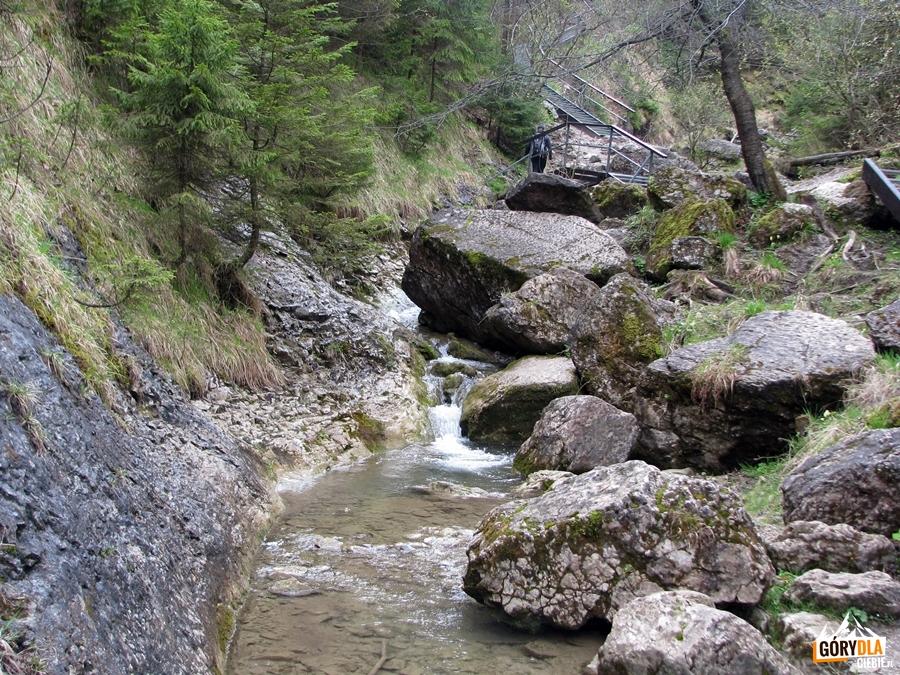 Potok Kamionka w Wąwozie Homole