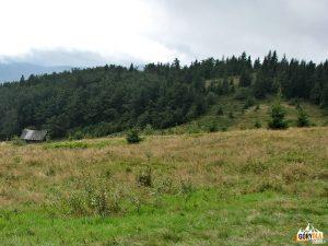 Szczyt Jasienia 1062 m i bacówka na Polanie Skalne