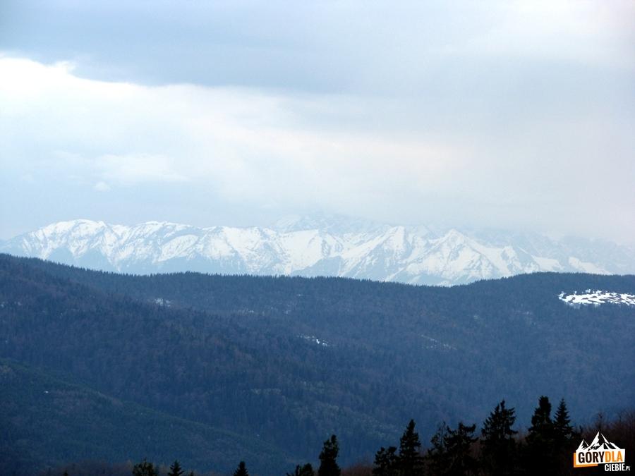 Tatry Bielskie widziane z polany Skalne pod Jasieniem 1062 m