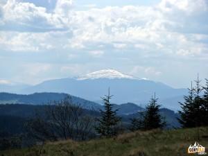 Szczyt Babiej Góry 1725 m widziany z Polany Nowej pod Myszycą 877 m
