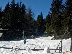 Droga ze schroniska na szczyt Turbacza 1310 m