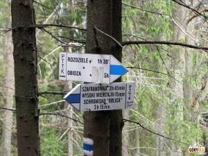 Skrzyżowanie szlaków pod Wysoką 1050 m