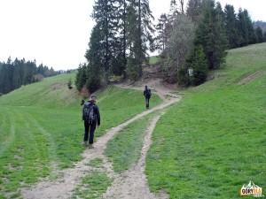Polana Rówienki (ok. 720 m) w drodze na Wysoką 1050 m