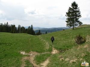 Zejście z Przełęczy Rozdziele do Jaworek