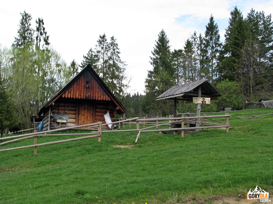 Bacówka nad Kociubylską Skałą przy szlaku na Przełęcz Rozdziela
