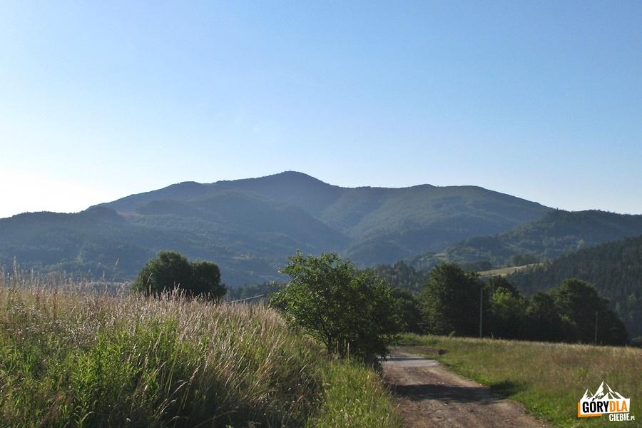 Mogielica widziana zprzełęczy między Jurkowem aWilczycami