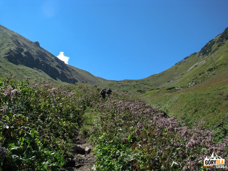Dolina Szeroka i Przełęcz Szeroka Bielska 1826 m