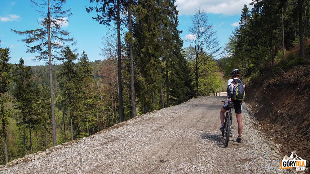 Szutrowa droga w kierunku przysiółka Potoki