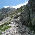 Ścieżka powyżej Żabiego Jaworowego Stawu