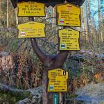 Skrzyżowanie szlaków poniżej Schroniska Zamkovskiego
