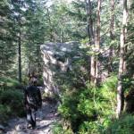 Zejście Doliną Spaloną (Zieloną) do Adamculi