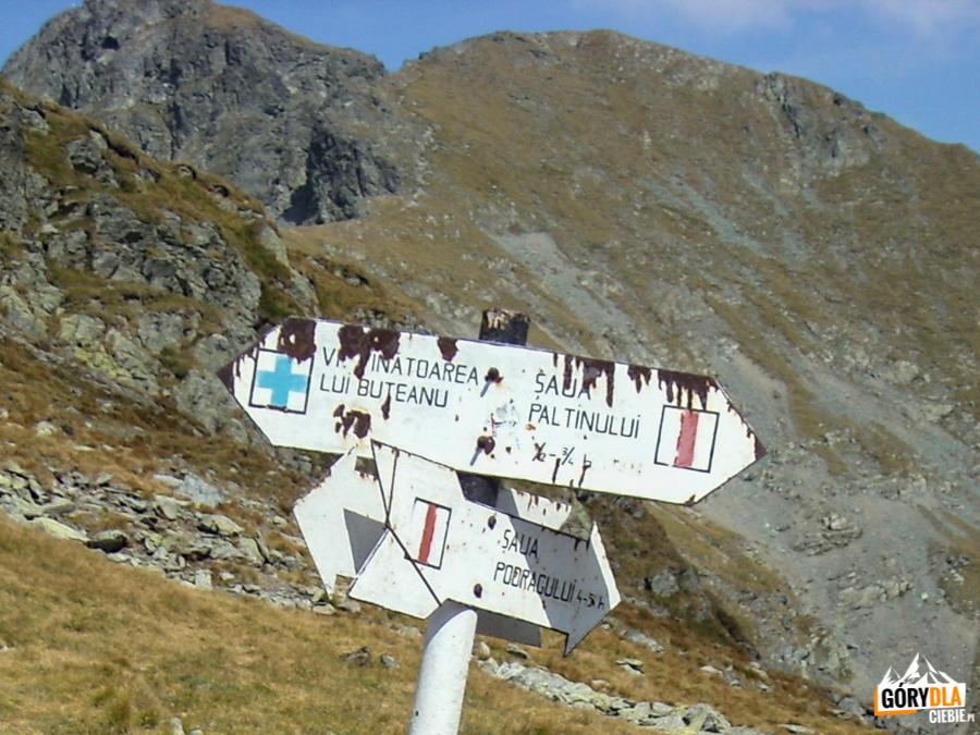 Skrzyżowanie szlaków na przełęczy Şaua Capre (5315 m)