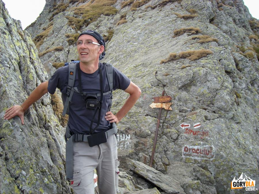 Pod szczytem Negoiu (2535 m)