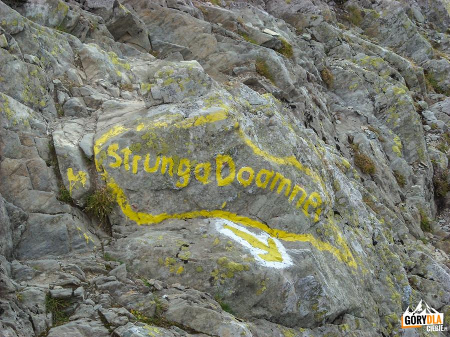 Rozwidlenie szlaków - żółty pasek na Strunga Doamnei