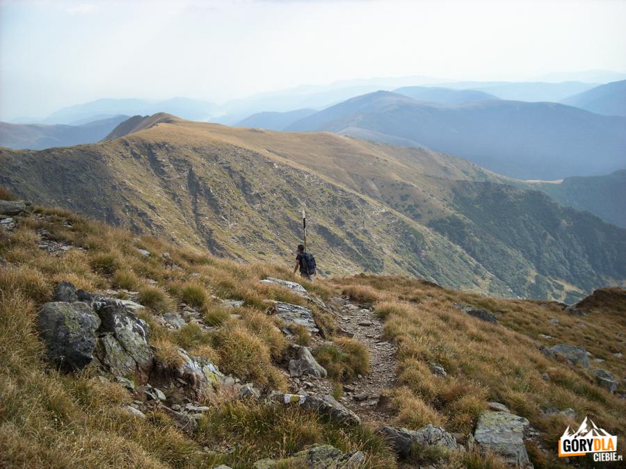 Zejście z Negoiu żółtym szlakiem