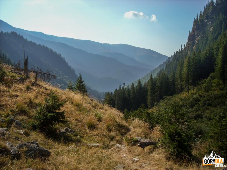 Droga z Piscul Negr do jeziora Lacul Călţun