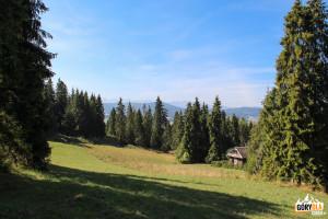 Polana pomiędzy Ostrą Górą (793 m), a Humbargiem (807 m)