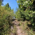 Na grani Żaru (883 m)