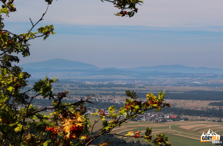 Widok z Żaru (883 m) na odległą Babią Górę i Pasmo Policy