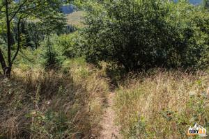 Karkołomne zejście z Żaru w kierunku Dursztyna