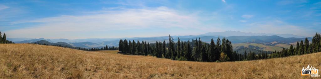 Panorama Pienin, Spisza i Tatr z polany pod granią Żaru (883 m)