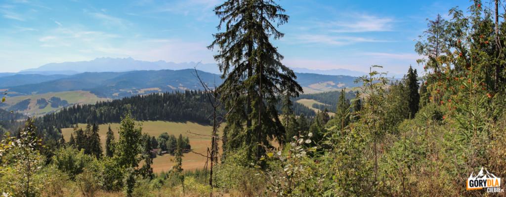 """Panorama Tatr z grani Żaru (883 m), w dole zabudowania """"Za Czarną Górą"""""""