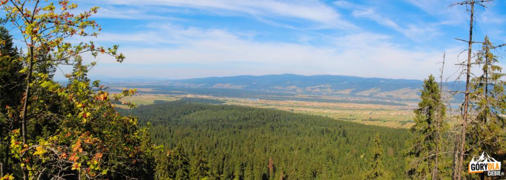 Widok z Żaru (883 m) na Gorce Zachodnie, odległą Babią Górę i Pasmo Policy