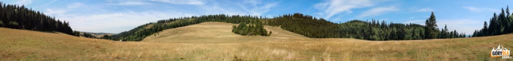 Rozległa przełęcz między Czarną Górą (805 m), Żarem (883 m) i Humbargiem (807 m)