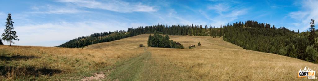 """Zabudowania """"Za Czarną Górą"""" pod granią Żaru (883 m)"""