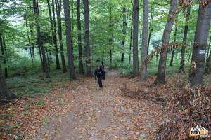 Podejście zielonym szlakiem na Kudłacze