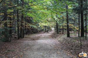 Zielony i czerwony szlak prowadzący na Kudłacze