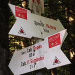 Droga do schroniska Cabana Valea Sâmbetei