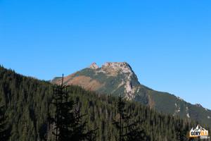 Giewont widziany ze szlaku w Dolince Jaworzynki