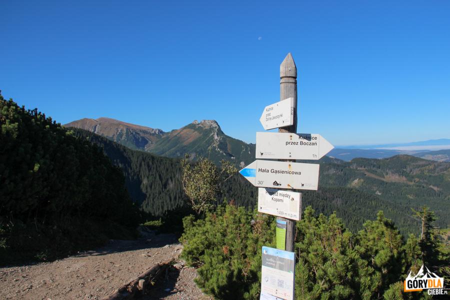 Przełęcz miedzy Kopami (1501 m)