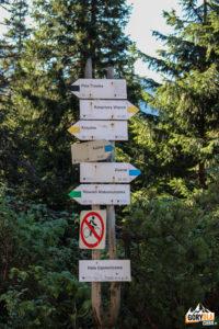 Szlaki przy Schronisku Murowaniec
