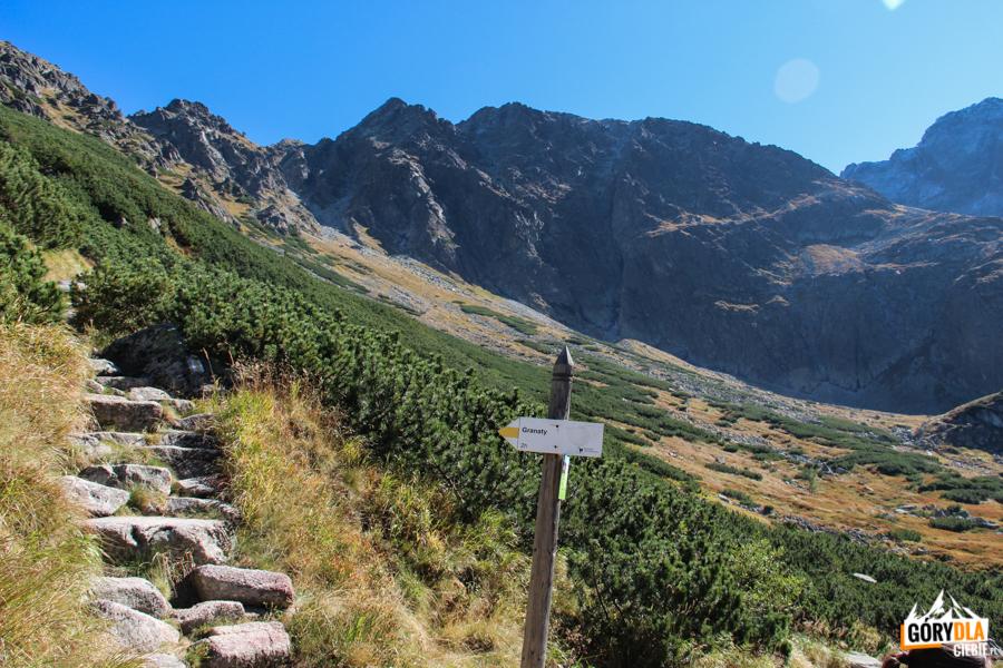 Żółty szlak prowadzący na Granaty