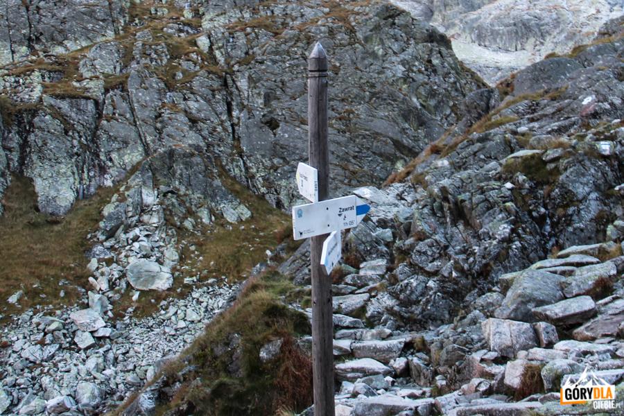 Żółty szlak z Koziej Dolinki dołącza do zbiegającego z Zawratu niebieskiego szlakuniebieskiego