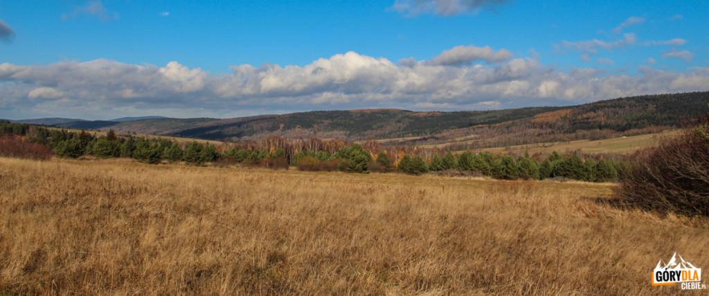 Beskid Niski - okolice Nowicy