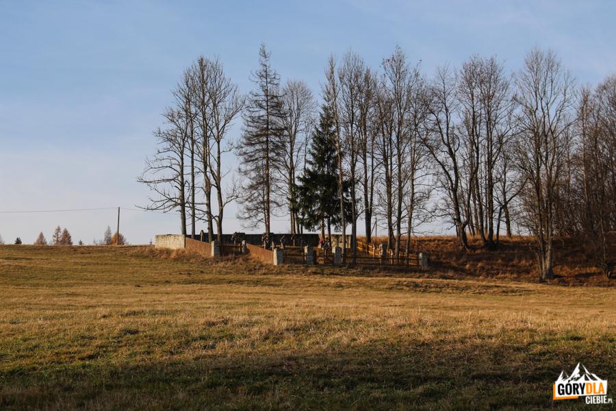 Cmentarz wojenny nr 62 w Banicy