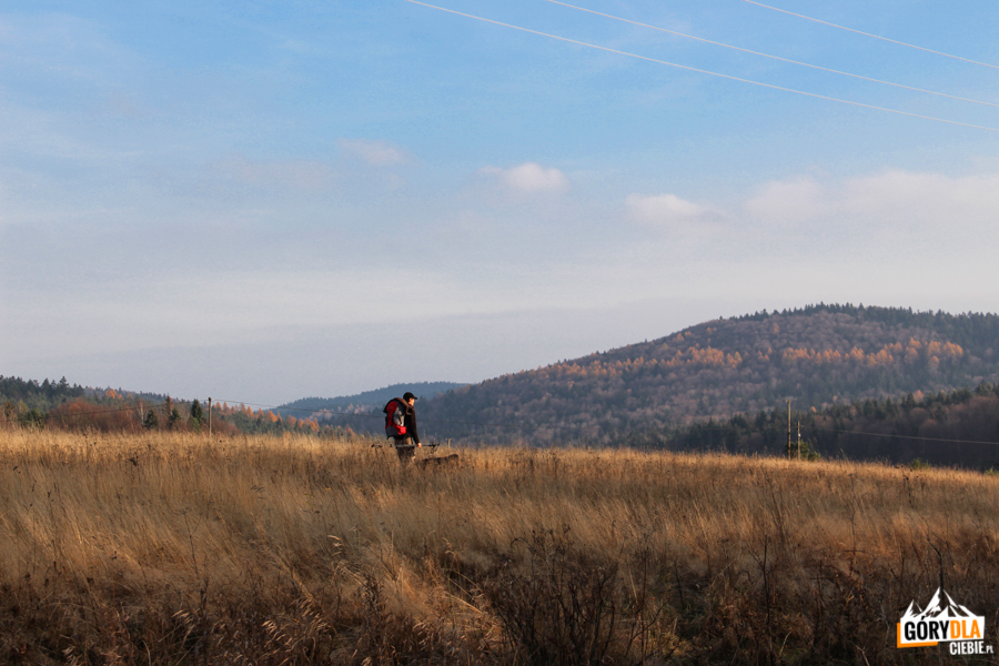Panorama ze wzgórza nad Banicą