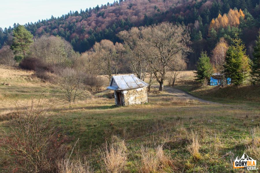 Kapliczka na szlaku Radocyna- Nieznajowa (Beskid Niski)