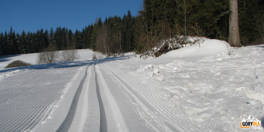 """Narciarska trasa biegowa """"Mogielica"""""""