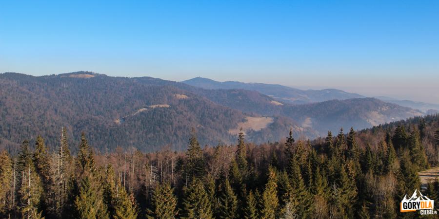 Gorce - widok z wieży widokowej na Magurkach
